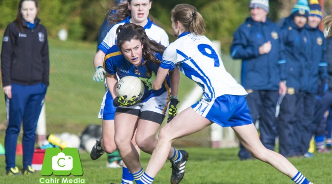 Tipperary volunteers seek perfect match - Tipperary Live